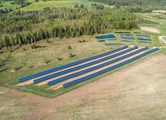 Päikesepark Leeli külas (BlizzardFoto) Tags: päikesepark solarpark päikesepaneelid solarpanels leeliküla leelivillage põld field energia energy droonifoto aerofoto dronephotography aerialphotography