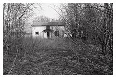 (2019) (phamnes) Tags: spring norway 35mm 135film blackandwhitefilm ishootfilm filmphotography coolscanved nikkor filmcamera kodak d76 delta400 ilford nikonfilm f75 nikon