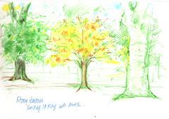 19May2019 Fitzroy Gardens (alissa duke) Tags: trees fitzroygardens melbourne
