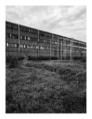 170930_172418_oly-PEN-f_heusden-zolder_de schacht_6/9 (A Is To B As B Is To C) Tags: aistobasbistoc b belgië belgium limburg heusdenzolder deschacht mijnwerkerslaan koolmijn magazijnen wall brick brickwork billboard field sky clouds pipe windows empty industry industrial industrialheritage mining olympus penf bw blackwhite blackandwhite monochrome