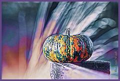 Exotic pumpkin (Elisafox22) Tags: elisafox22 hss sliderssunday pumpkin fence fencepost colours textures slide sliding photoshop ipad postprocessing photomanipulation photo image photomanipulated patterns texture outdoors elisaliddell©2019