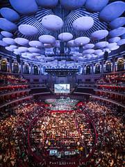 Royal Albert Hall 20/52 2019 (amipal) Tags: 75mm uwa architecture capital city curve england gb greatbritain laowa london manuallens royalalberthall uk unitedkingdom urban photoaweek photo52