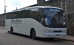 Beeline EXZ 8223 (tubemad) Tags: exz8223 am51whn 2480ph caetano enigma volvo b10m rrb beeline coaches