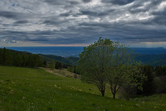 Monte Joanaz (paolo-p) Tags: montagna mountain alberi trees joanaz masarolis torreano faedis canebola nuvole clouds