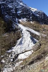 Avalanche--HD1023dxo (Artiste/Photo) Tags: d850 france frensh hiver nikon paysage ciel cloud divers image picture view vue paca parcdesecrins montagne arbre alpesdehautprovence neige