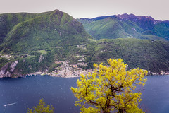 Lake Lugano (Bephep2010) Tags: 2019 7markiii alpen alpha baum carona frühling ilce7m3 lagodilugano lakelugano luganersee lugano montesansalvatore sel24105g schweiz see sony switzerland tessin ticino wald alps forest lake spring tree ⍺7iii pazzallo kantontessin