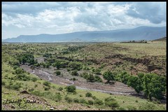Rift Valley (SpacePaparazzi.com) Tags: tanzania africa southeastafrica safari ngorongorocrater riftvalley greatriftvalley creationoflife