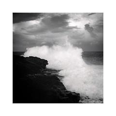 breaking wave, Sydney coast  2015  #355 (lynnb's snaps) Tags: nikonfm kodaktmax400 tmx400 2015 winter film 35mmfilm nikkorlenses nikkor24mmf28nonai bw blackandwhite blackwhite noiretblanc monochrome ©copyrightlynnburdekinallrightsreserved ishootfilm