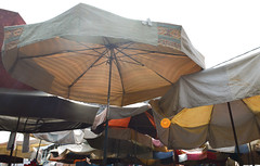Parasols in the market