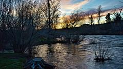 Reno's Chrissy Caughlin Park (Narodnie Mstiteli) Tags: truckeeriver stream riparian willows trees sunset highwater springflow reno nevada renochrissycaughlinpark river streamside donbachman narodniemstiteli marshalartsofchilcoot alumcreek