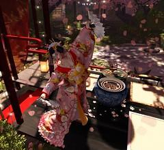 Dance of Spring (LiangScorpio) Tags: posesion sl oiran tulip flower flowers spring kimono silverlyk catwa
