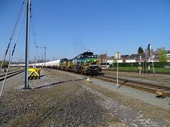 Lineas New Colors ! Dieselpower with Gas Train at Venlo,the Netherlands , April 10,2019 (Treinemanke) Tags: lineas lns train freighttrain trein zug spoorweg eisenbahn railway railroad railfan railfans trainspotting sony dschx350 sonydschx350
