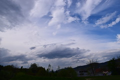 Durango (eitb.eus) Tags: eitbcom 35411 g1 tiemponaturaleza tiempon2019 primavera bizkaia durango javierlanazuñiga