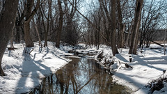 Dodge Nature Center (Lzzy Anderson) Tags: dodgenaturecenter naturecenter park saintpaul westsaintpaul farm lake pond april 2019 spring minnesota woods forest
