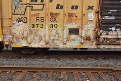 CAMEO (TheGraffitiHunters) Tags: graffiti graff spray paint street art colorful benching benched freight train tracks boxcar cameo