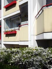 Die Balkone. / 15.04.2019 (ben.kaden) Tags: berlin marzahn landsbergerallee balkone architekturderddr architektur plattenbau frühling 2019 15042019