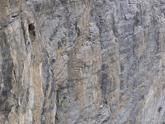 Cliffs of EEOR (David R. Crowe) Tags: cliff landscape mountain nature outdooractivities scrambling canmore ab canada