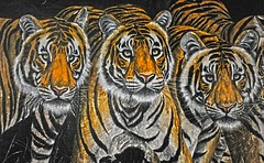 Paper Tiger or Synthetic Vitamin T Ranthambore India DSC_3803 (JKIESECKER) Tags: tigers tigerpreserves india ranthambore ranthamboretigerpreserve streetscenes streetart graffiti art mural