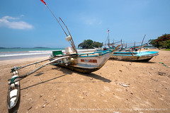 IMG_7535.jpg (Dhammika Heenpella / CWSSIP Images of Sri Lanka) Tags: rafts dhammikaheenpella මුහුදුවෙරළ traveldestination weligamabeach ශ්රීලංකාවේචායාරූප ධම්මිකහීන්පැල්ල placesofinterest fishingboats rafters imagesofsrilanka srilanka වැලිගම ශ්රීලංකාවේෆොටෝ ශ්රීලංකාව taprobane island