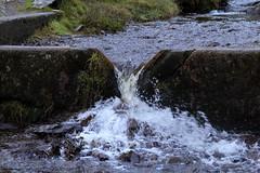 IMG_1879 (Simon M Hendry) Tags: unitedkingdom cardingmillvalley longmynd shropshire shropshirehills water trail track path hills waterfall winter england
