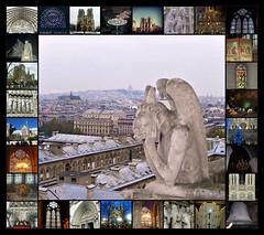 Notre-Dame de Paris collage (dominotic) Tags: notredamedeparis ourladyofparis parisskyline history architecture gargoyle carving 4tharrondissement îledelacité rooftop medievalcatholiccathedral paris france monday15042019