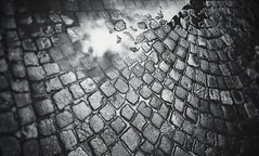 rain (Rino Alessandrini) Tags: backgrounds abstract pattern closeup textured old dark rough dirty material blackcolor cracked weathered macro backdrop everypixel rain