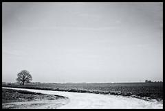 2019-03-21-Brabant-Wallon-25Pt (Pontalain) Tags: atmosphere black blackandwhite cloud horizon labels landscape monochrome monochromephotography naturallandscape photography plain plant river road ruralarea sky snow stockphotography street thoroughfare tree water white winter arbre plaine route