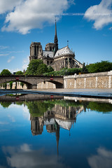 Hommage à Notre-Dame de Paris ... 🇫🇷 (Yannick Lefevre) Tags: europe france paris notredame monument cathedrale church landscape architecture art puddlesreflection puddles reflection symmetry city nikon nikkor