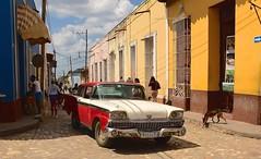 Cuba- Trinidad (Explore) (venturidonatella) Tags: cuba trinidad caraibi caribbean street strada streetscene streetlife streetphotography colori colors car auto automobile persone people gentes gente nikon nikond500 d500 cane dog luce ombra shadow light