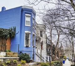 blue house (ekelly80) Tags: dc washingtondc spring march2019 rowhouses blue corner