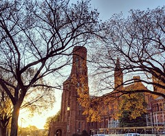 castle glow (ekelly80) Tags: dc washingtondc spring march2019 smithsonian castle glow light morning nationalmall tree leaves golden