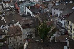 DSC_2871 (ryanlammi) Tags: zurich switzerland europe