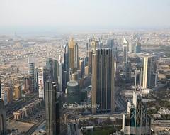 Dubai Skyline (Flame1958) Tags: dubai dubaiskyline unitedarabemirates 010518 0518 2018 travel middleeast mideast 7783 uae