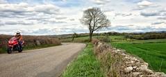 Biking Countryside