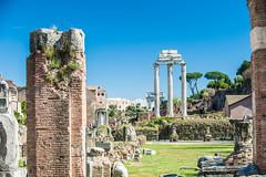 Il Tempio dei Dioscuri (RoamingTogether) Tags: 70200vrii europe iltempiodeidioscuri italy nikon nikon7020028 nikond700 romanforum rome tempiodivesta templeofvesta