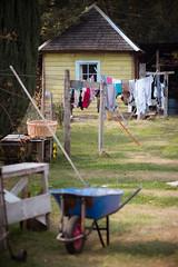 - (dirojas) Tags: leica m240 90mm summicron pirihueico chile puerto clothes drying outside rural