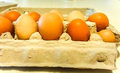 Egg variation (Canadian Dragon) Tags: 2018 bc canada dschx5c nanaimo september vancouverisland big carton dozen egg eggs fall mismatch size variety wrinkled wrinkly