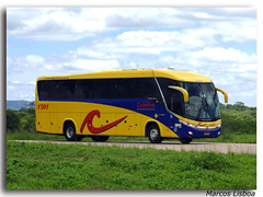 "Marcopolo Paradiso 1200 G7 Scania K360 (Marcos A.Lisboa) Tags: حافلة λεωφορείο รถบัส ավտոբուս 鉸接式客車 автобус autobus autobusa autobusai autobuses autobusos autobusy autocarro autocarros avtobus bendy bendies bus buses buss bussen busstation coach coaches coletivo coletivos conforto estação executive executivo express expresso interdepartamentales machimbombo marcopolo microlete obusse omnibusse onibus ônibus otobüs paradiso passeio passeando road rodoviaria rodoviario rodoviária scania shuttle shuttles sightseeing stasjon terminal ""tocatoca"" tour tourism transport transporte transportes travel travelling turismo urbano viagem viajando veículo veicolo vehicle"