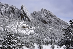 Filigreed Stone (courtney_meier) Tags: boulder colorado unitedstatesofamerica april bouldercounty clearingstorm clouds coloradorockies flatironformation flatirons landscape morning morninglight mountains pines pinusponderosa rockymountains snow snowclouds snowstorm snowscape spring springsnow