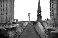Notre Dame, Paris 1978 (Dave Glass . foto) Tags: notredame notredameroof notredamefire notredamespire notredamepares paris france 35mmfilm paris1970s