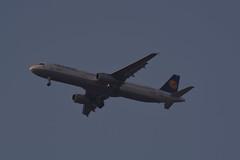 D-AIDJ (陈霆, Ting Chen, Wing) Tags: lh1343 airbusa321 airbusa321231 lufthansa daidj dlh5rk