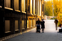 The Golden Company (DobingDesign) Tags: streetphotography light goldenlight shadow yellows golds people street london together windows trees candid evening leaves goldenhour coaldropsyard kingscross golden sunlight sunlitstreet