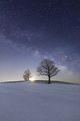 3238 (Keiichi T) Tags: 夜 空 天の川 milkyway tree 6d 木 blue 月明かり winter night 光 eos canon 日本 snow 冬 雪 星 star 月 夜空 moon japan moonlight light sky 夜景