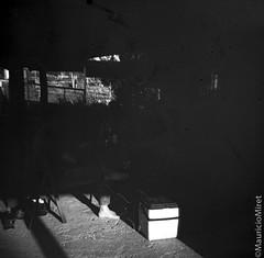 Holga-Acros-03-01.jpg (Mauricio Miret) Tags: holga acros100 ilfosol silverscan epsonv600 bw film blackandwhite