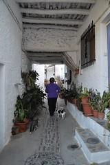 DE PASEO BAJO TINAO, ALPUJARRAS (Pepe Rodríguez Cádiz) Tags: alpujarras pueblosconencanto blanco animales gato perro gente madera calle street macetas flower andalucía