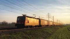 Re 420 297 (Die_Eisenbahn) Tags: sbb sbbcargo sbbc cargoexpress güterzug freighttrain re420 re420297 bellach schweiz switzerland zug train