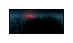 SDIM6029 (3) (Bailey2168) Tags: borderfx sunset walton thames surrey subtle foveon x3 sigma sd15 manual m42 lens pentacon 200mm 200 gdr