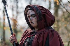 DSC_4453 (nicolepep) Tags: elfia haarzuilens kasteel de haar cosplay fantasy