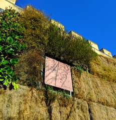 prison plants (ekelly80) Tags: italy florence march2019 spring prison oldprison plants greenery green art walls architecture