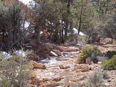 P1000332 (odetojoy24) Tags: utah bryce canyon streams national parks